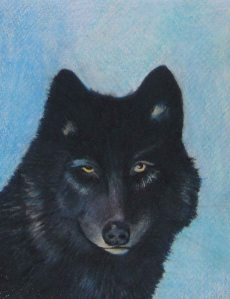My Black She Wolf