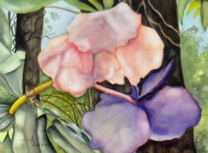 #14 Thailand Orchid watercolor 12 x 16